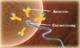 Спермограмма расширенная (общая спермограмма + морфология по Крюгеру  + MAR – тест)